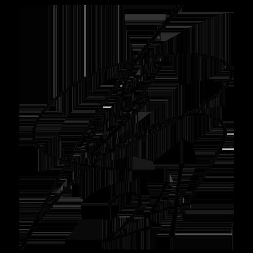 菅原由勢の画像 p1_10